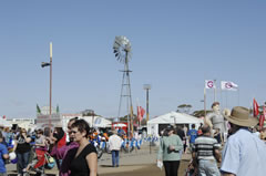 Agfair Crowd